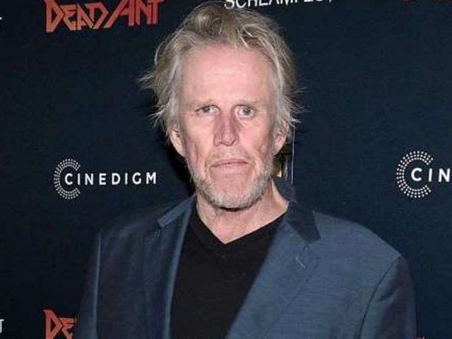 Gary Busey Biography, Son, Net Worth, Wife and Other Interesting Facts